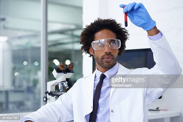 let the analyzing begin - forensic science stock pictures, royalty-free photos & images