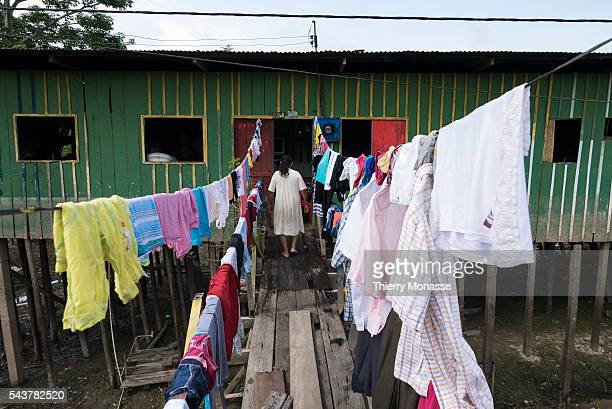 Leticia Amazonas Republic of Colombia August 12 2015 A Woman is drying cloth in the slum beside the Amazon river in Leticia