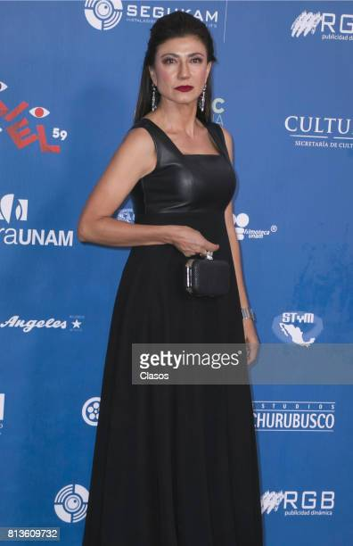 Leticia Huijara poses during during the 59th Ariel Awards Red Carpet at Palacio de Bellas Artes on July 11 2017 in Mexico City Mexico