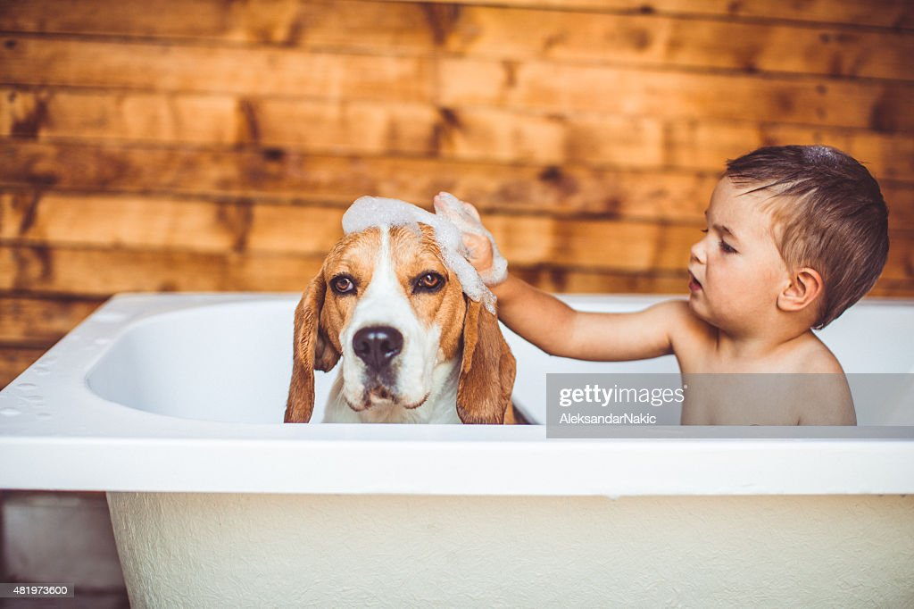 Let's clean you up : Stock Photo