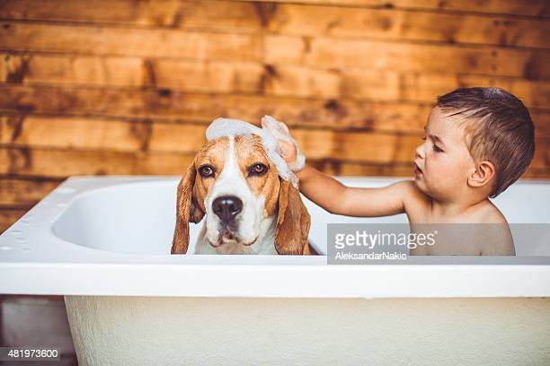let's clean you up - taking a bath stock pictures, royalty-free photos & images