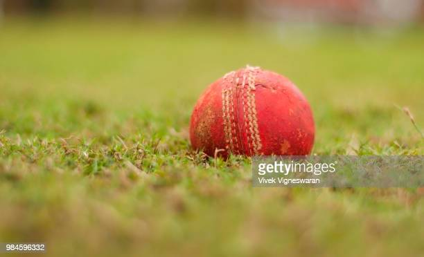 let's cricket - cricket ball stock pictures, royalty-free photos & images