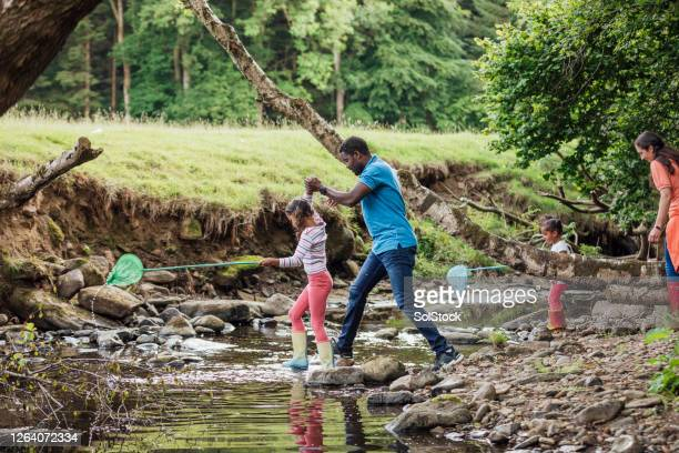 lets cross the stream - river stock pictures, royalty-free photos & images