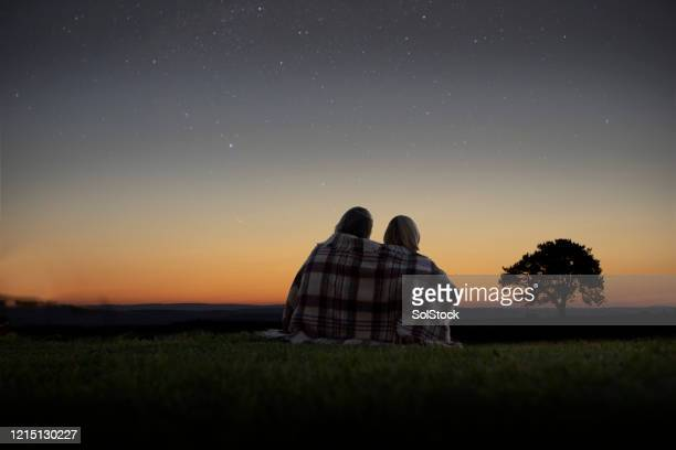 lets day dream under the stars - night stock pictures, royalty-free photos & images
