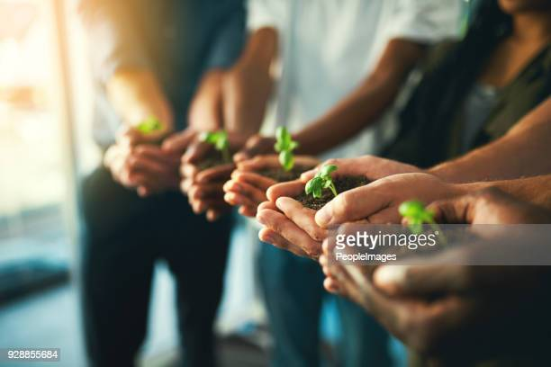 let's grow together - responsibility stock pictures, royalty-free photos & images