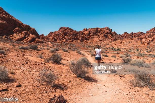 散歩に行きましょう - ネバダ州 ストックフォトと画像