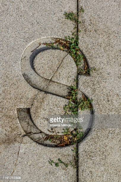 letter s - letter s stock pictures, royalty-free photos & images