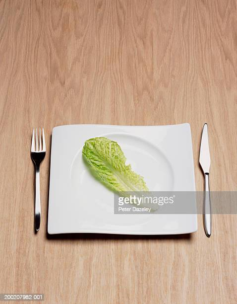 Lettuce leaf on plate, elevated view