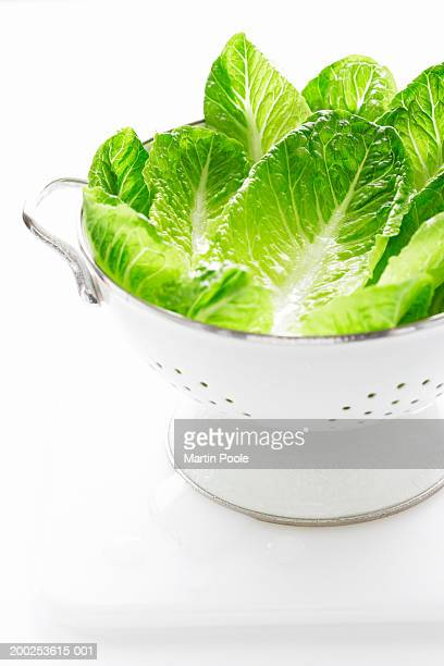 lettuce leaves in metal strainer - utensil stock pictures, royalty-free photos & images