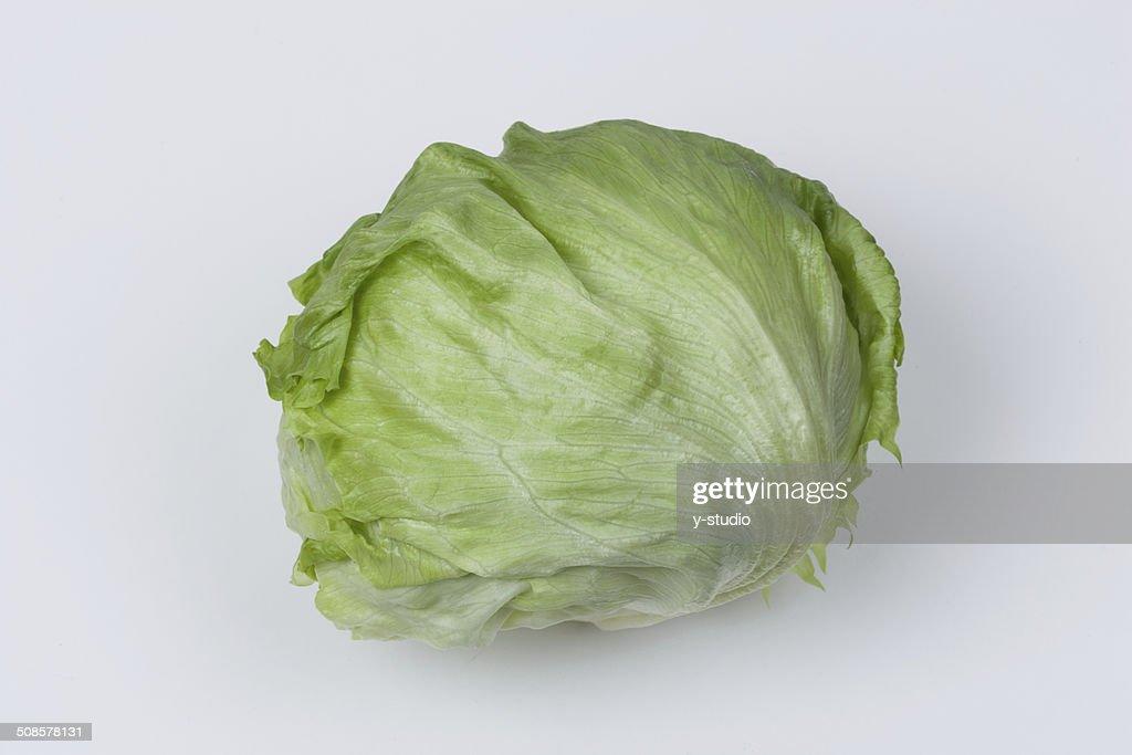 Lettuce : Stockfoto