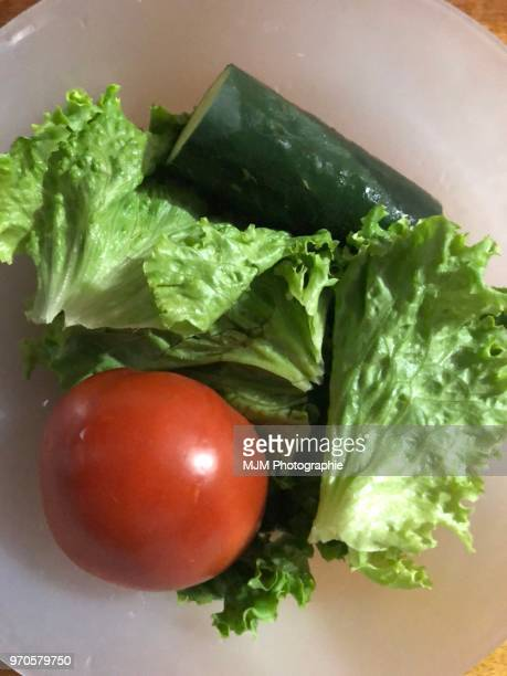Lettuce, tomato and cucumber on white plate