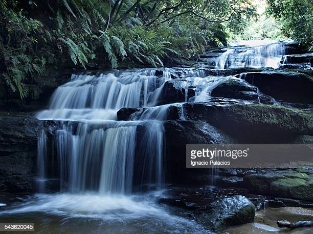 Leura cascades in the Blue mountains, Sydney
