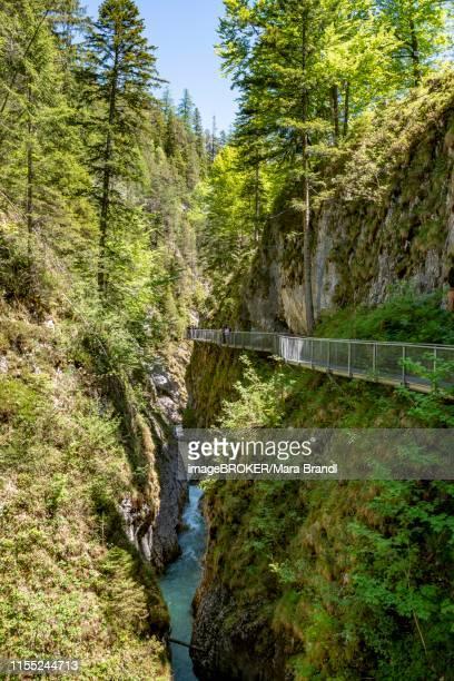 leutasch gorge, near mittenwald, bavaria, germany - mittenwald fotografías e imágenes de stock