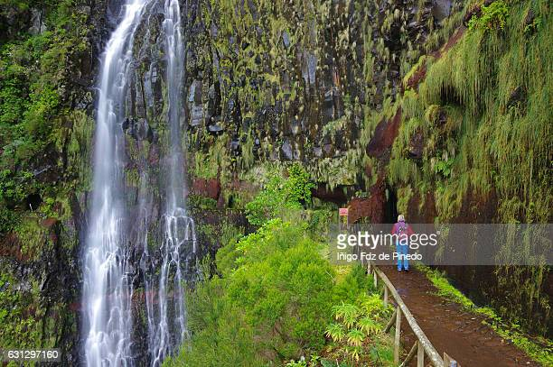 levada pathway-woman in risco waterfall -madeira island- portugal - lareira stock pictures, royalty-free photos & images