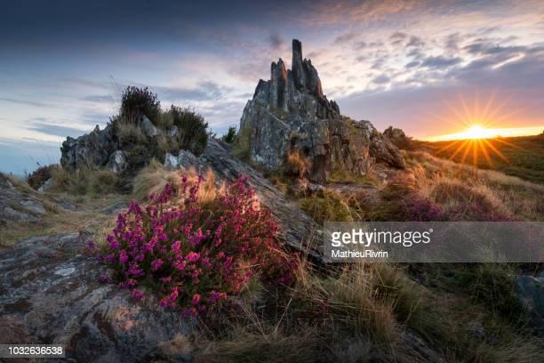 lever de soleil chargé de légendes dans les monts d'arrée - bretagne photos et images de collection