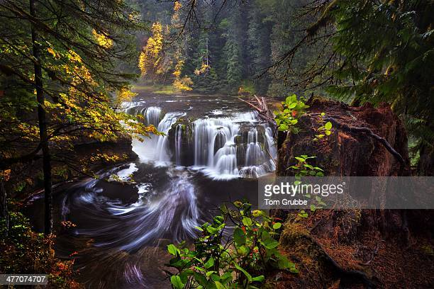 lewis falls overlook - tom grubbe stock pictures, royalty-free photos & images