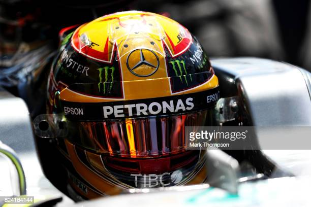 Lewis Hamilton of Great Britain driving the Mercedes AMG Petronas F1 Team Mercedes F1 WO8 in the Pitlane during final practice for the Formula One...