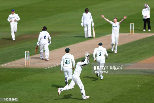 Lewis Hill of Leicestershire celebrates after catching Ben Brown of Sussex off the bowling of Tom Taylor of Leicestershire during the Specsavers...
