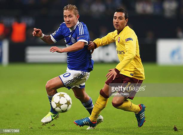 Lewis Holtby of Schalke and Santi Cazorla of Arsenal compete for the ball during the UEFA Champions League group B match between FC Schalke 04 and...