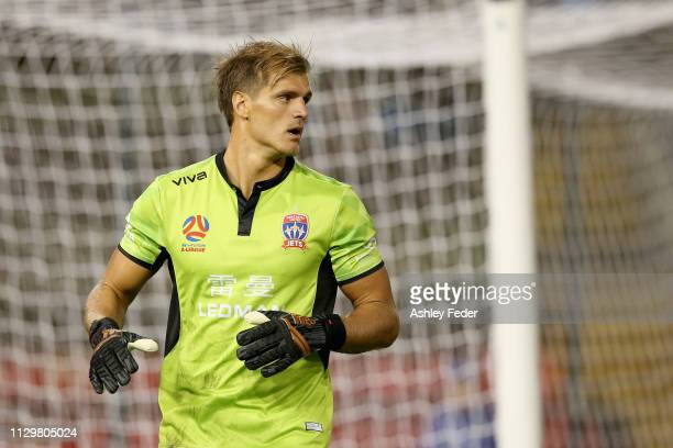 Lewis Italiano of the Newcastle Jets in goals during the round 19 ALeague match between the Newcastle Jets and Melbourne City at McDonald Jones...