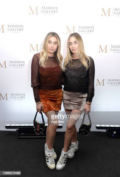Lexi Kaplan and Allie Kaplan of The Kaplan Twins attend The Official VIP Preview Of 'Empyrean' By Raphael Mazzucco At Maddox Gallery LA hosted By...