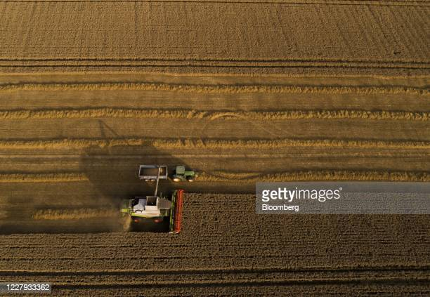 Lexion combine harvester, manufactured by Claas KGaA, unloads harvested wheat into a trailer pulled by a tractor during the summer harvest in a field...