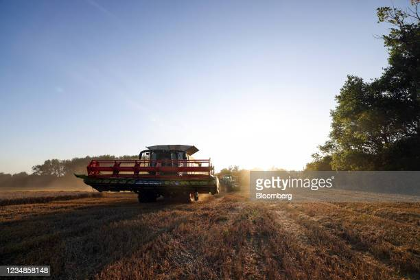 Lexion combine harvester moves through a freshly cut field of wheat during a harvest in Benfleet, U.K., on Tuesday, Aug. 24, 2021. Global wheat...
