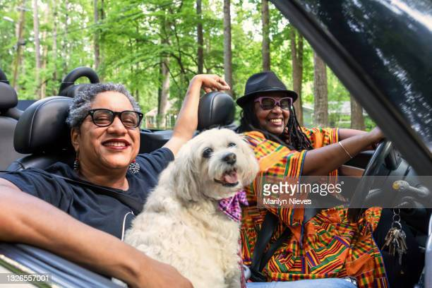 """lgbt family driving in their convertible - """"marilyn nieves"""" stock pictures, royalty-free photos & images"""