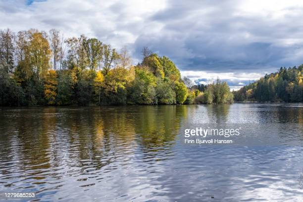 lågen, idylic river near larvik norway. fall colors reflections in the water - finn bjurvoll ストックフォトと画像