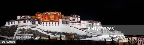 lhasa, panorama of potala monastery at night, tibet autonomous region, china - ancient history stock pictures, royalty-free photos & images