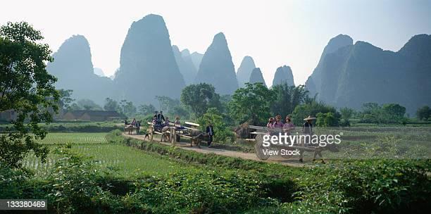 Li river,Guangxi province,China