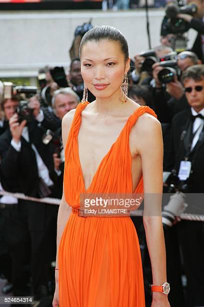 Cannes - The Da Vinci Code World Premiere & Opening Gala