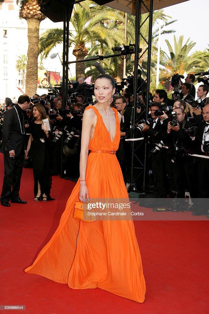 Li Xin at the premiere of 'The Da Vinci Code' during the 59th Cannes Film Festival.