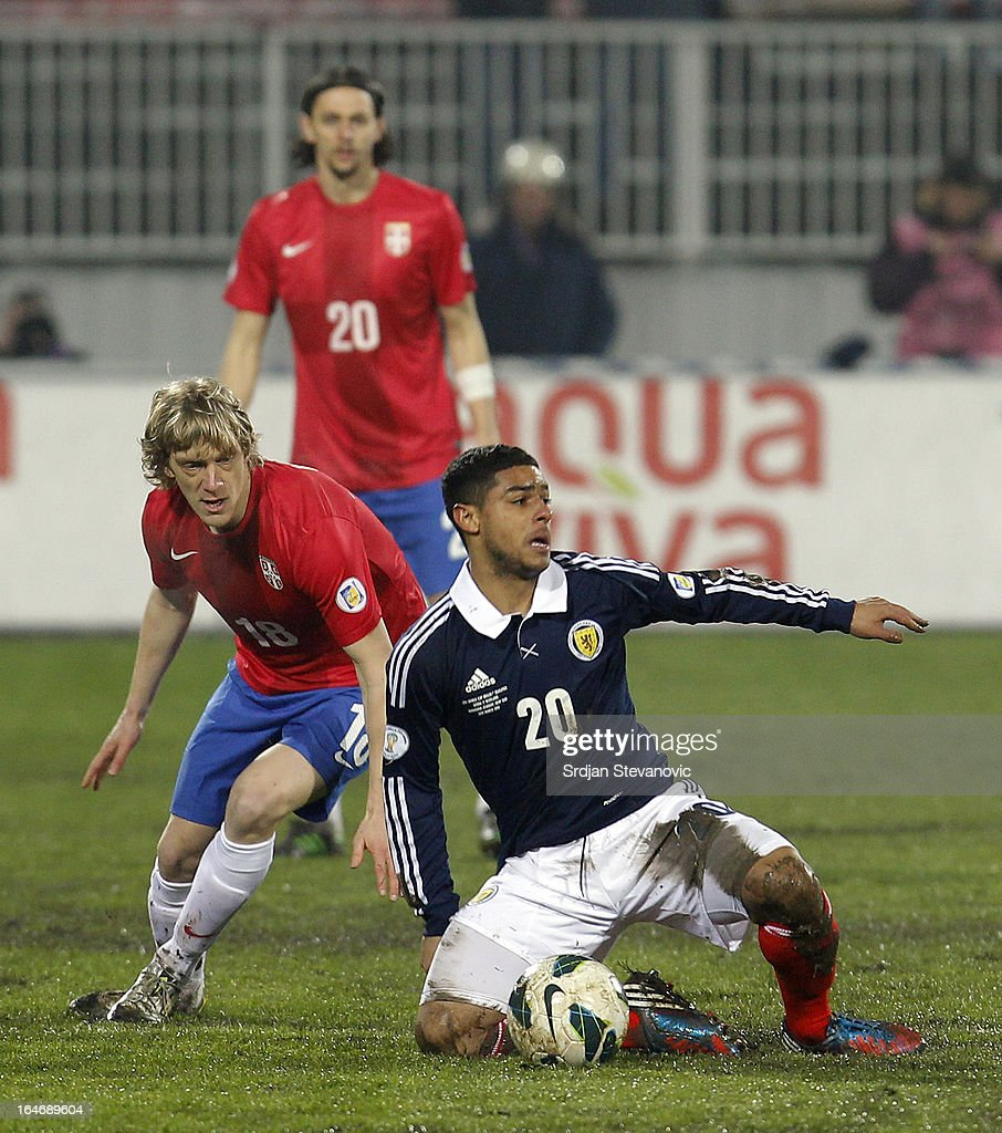 Serbia v Scotland  - FIFA 2014 World Cup Qualifier : News Photo