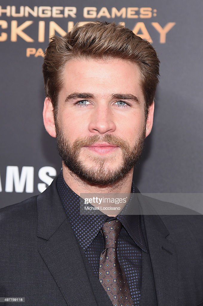 """The Hunger Games: Mockingjay- Part 2"" New York Premiere"