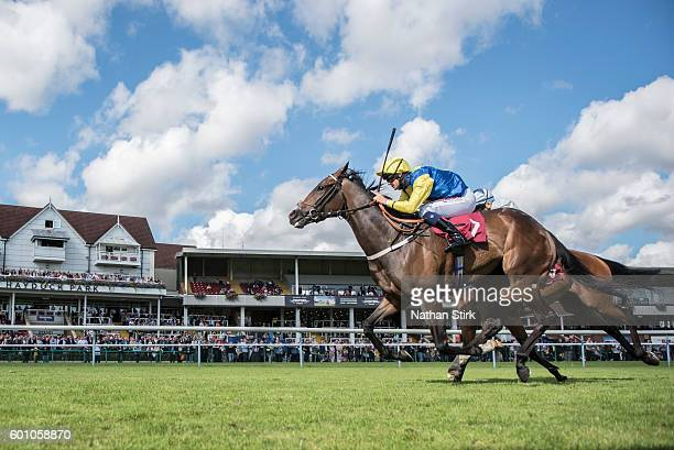 Liam Jones riding Simply Me during The ApolloBET Bet On Lotteries Fillies Handicap Stakes at Haydock Park Racecourse on August 4, 2016 in Haydock,...