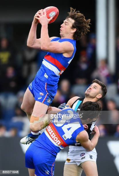 Liam Picken of the Bulldogs marks during the round 22 AFL match between the Western Bulldogs and the Port Adelaide Power at Mars Stadium on August 19...