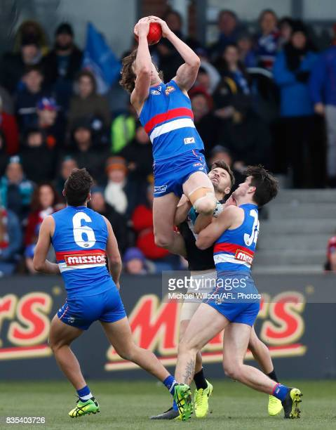 Liam Picken of the Bulldogs takes a spectacular mark during the 2017 AFL round 22 match between the Western Bulldogs and the Port Adelaide Power at...