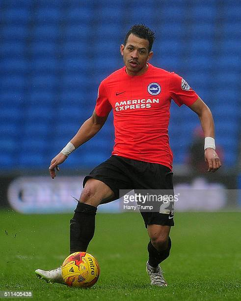 Liam Rosenior of Brighton and Hove Albion during the Sky Bet Championship match between Cardiff City and Brighton and Hove Albion at the Cardiff City...