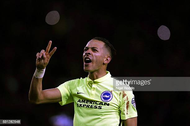 Liam Rosenior of Brighton & Hove Albion reacts after the Sky Bet Championship Play Off First Leg between Sheffield Wednesday and Brighton & Hove...