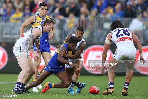 Liam Ryan of the Eagles and Bradley Hill of the Dockers contest for the ball during the round 20 AFL match between the West Coast Eagles and the...