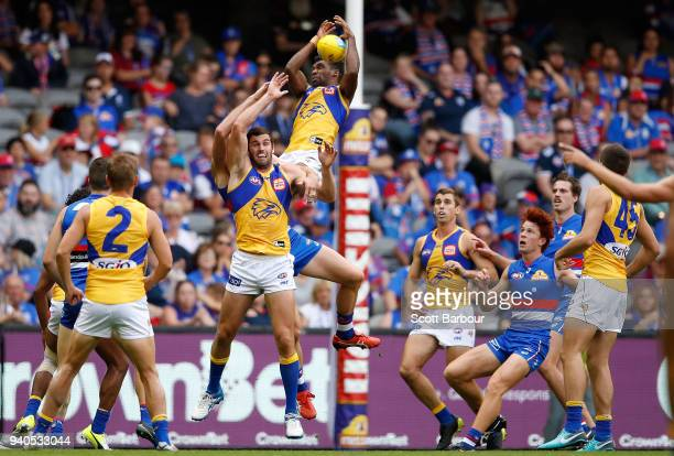 Liam Ryan of the Eagles takes a spectacular mark during the round two AFL match between the Western Bulldogs and the West Coast Eagles at Etihad...