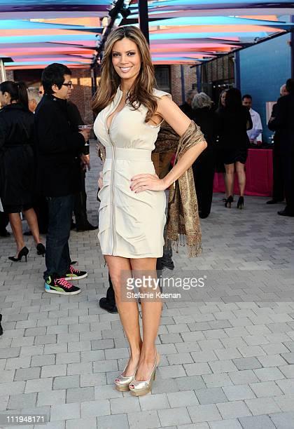Lianna Grethel attends La Plaza de Cultura y Artes Grand Opening Gala on April 9, 2011 in Los Angeles, California.