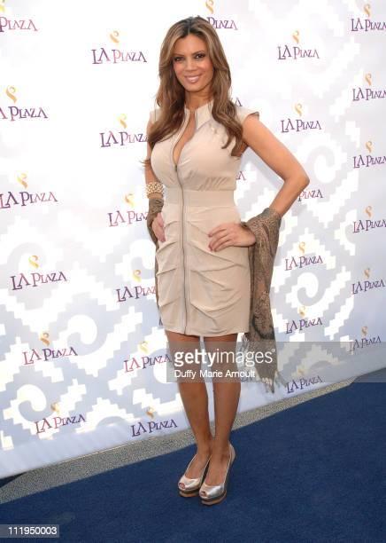 Lianna Grethel attends La Plaza Inaugural Gala at LA Plaza de Cultura y Artes on April 9, 2011 in Los Angeles, California.