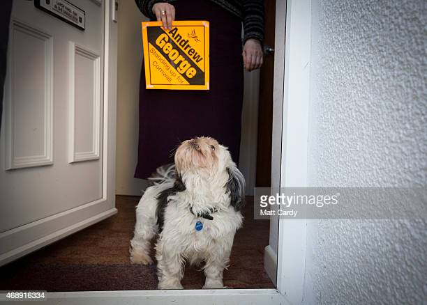 Liberal Democrat Andrew George greets a voter's dog as he canvasses in Porthleven on April 8 2015 in Cornwall England The consistency of St Ives...