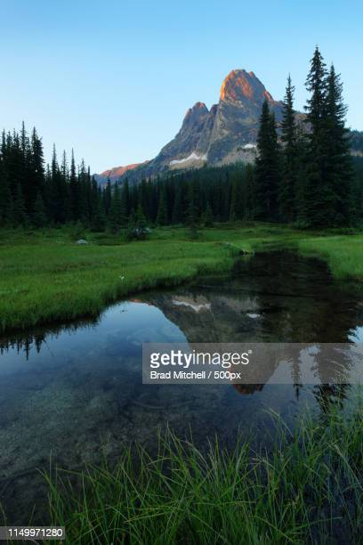 Liberty Bell Mountain Reflected In Pond In Grassy Meadow, Washington Pass, North Cascades, Chelan