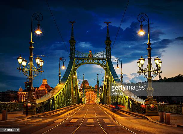 liberty bridge, budapest - budapest stock pictures, royalty-free photos & images