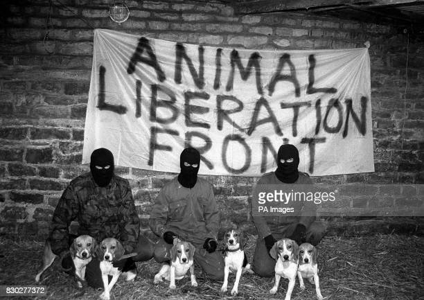Library filer dated 4/11/90 of Animal Liberation Front members Investigative documentary maker Graham Hall who exposed extreme elements within the...