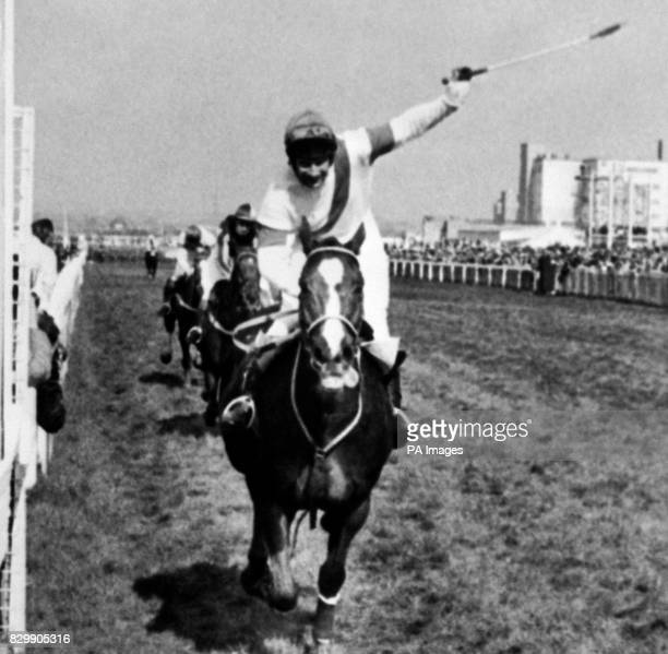Library Filer No 1964963of Bob Champion on Aldaniti in the Grand National dated 4481 Aldaniti one of the bestloved winners of the Grand National died...