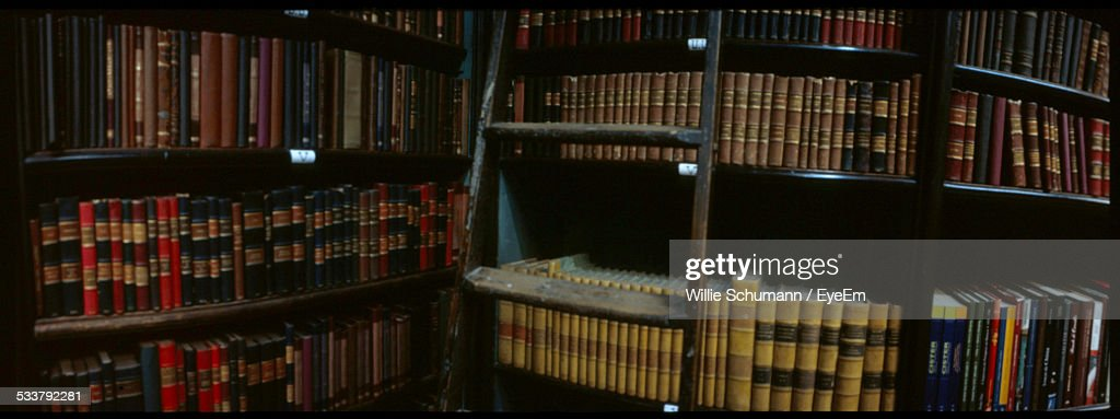 Library Shelves And Ladder : Foto stock